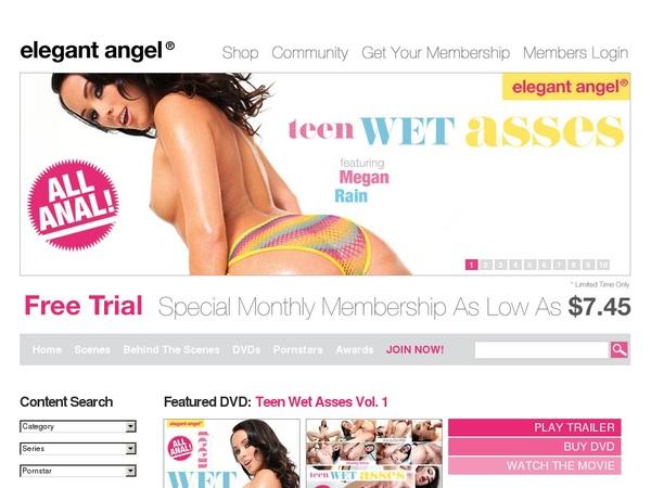 Password Free Elegant Angel