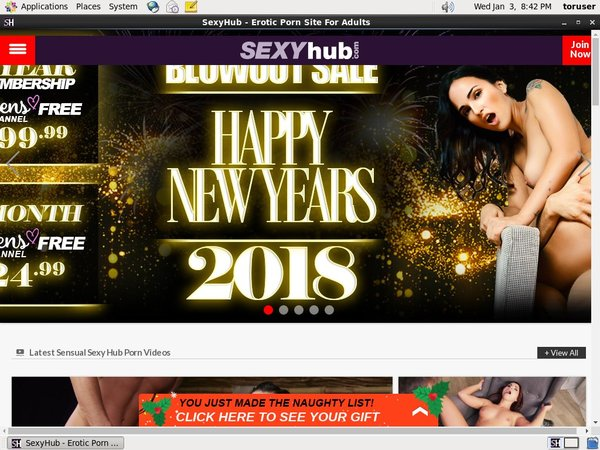 Sexy Hub Discounts